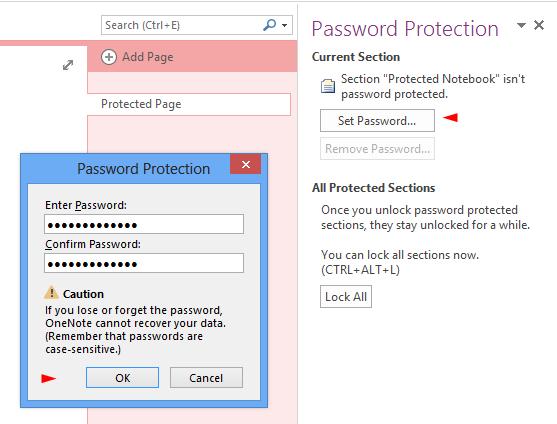 Set a section password