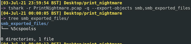 PrintNightmare Network Analysis 12